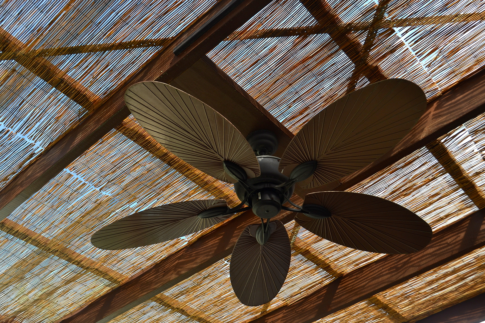 ceiling-fans-outdoor-spaces-wilcox-electric-dc